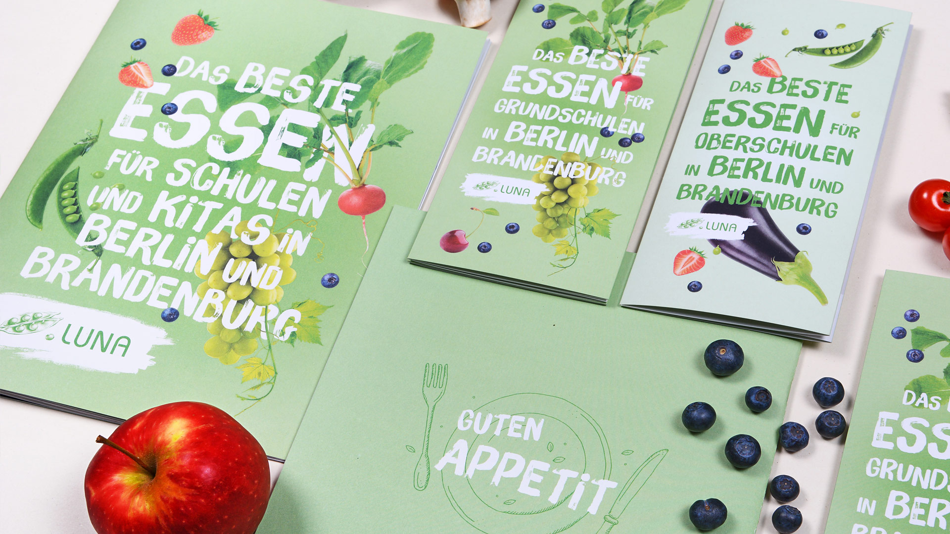 Cover LUNA-Flyer und Imagebroschüre