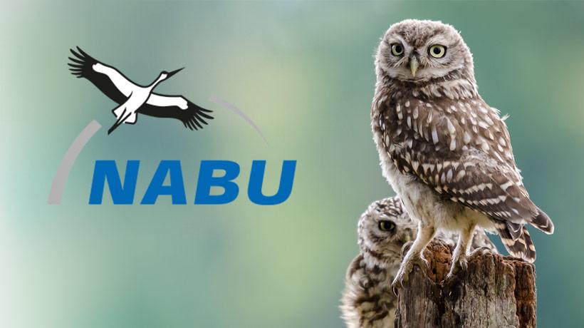 Nabu-news