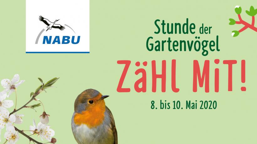 "Motiv ""Stunde der Gartenvögel"""