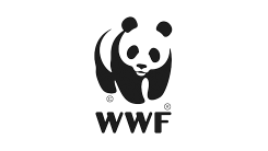World Wide Fund For Nature (WWF) Logo