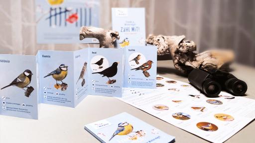 Relaunch Vogelzähl-Kampagne für NABU