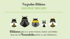 publicgarden Infografik | Bund: Hummelflyer