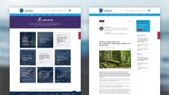 CLEW   Unterseiten des Webprojektes